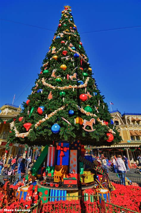 magic kingdom christmas tree wdw fan zone