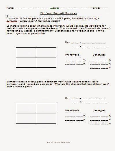 Punnett Square Worksheet by Big Theory Punnett Square Worksheet Llc Middle