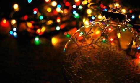 8 animal christmas lights merry christmas