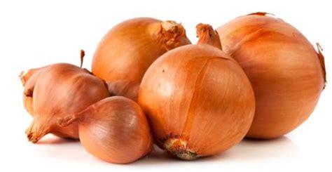 coltivare cipolla in vaso cipolle 5 modi per piantarle e coltivarle greenme