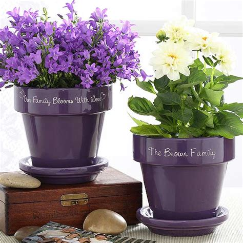 40 ideas to dress up terra cotta flower pots gardening