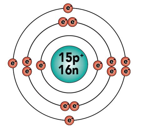 Protons In Phosphorus by Phosphorus Protons Neutrons Electrons Hydrogen