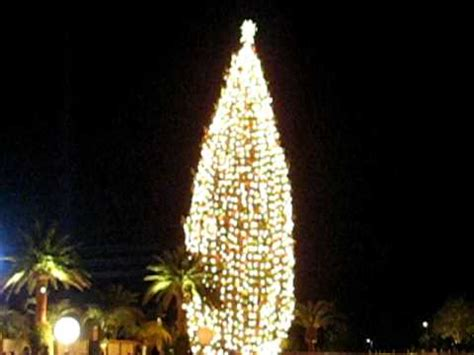 tallest christmas tree in united states of america youtube