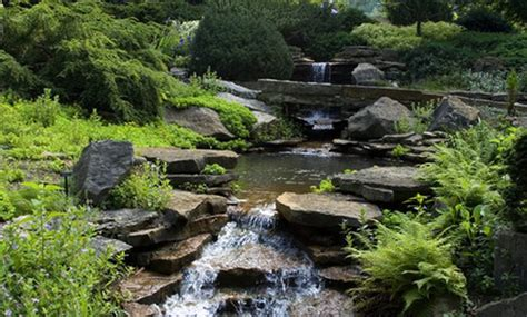 backyard creek ideas landscaping ideas for backyard creeks hunker
