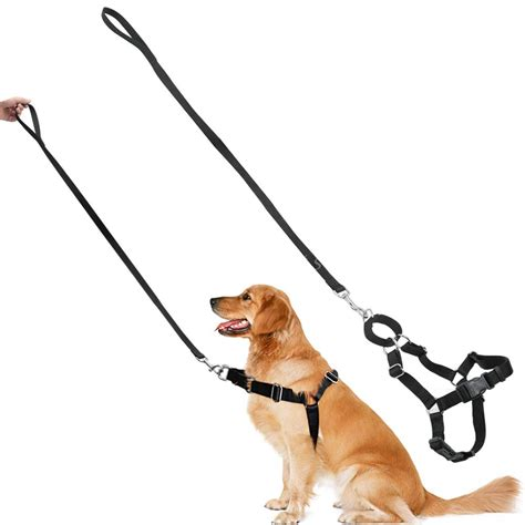 teaching a puppy no strong front leading no pull no choke harness walking collar lead