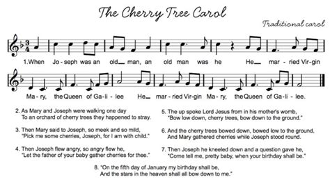 cherry tree song 152 best images about lyrics songteksten on