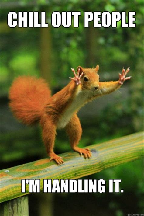 Chill Out Meme - chill out people i m handling it squirrel quickmeme