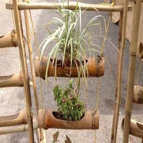 Planters For Bamboo by 1000 Ideas About Bamboo Planter On Planters