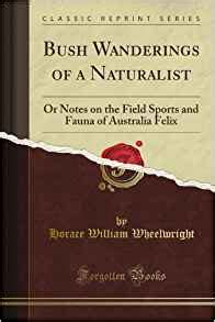 wanderings in the orient classic reprint books bush wanderings of a naturalist or notes on the field