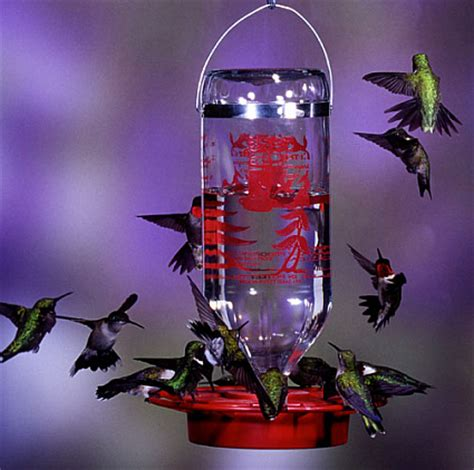 bottle hummingbird feeders bottle style hummingbird