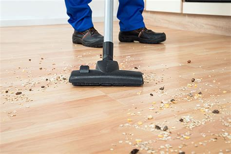 limpieza pisos barcelona limpieza de pisos barcelona s 237 ndrome de di 243 genes