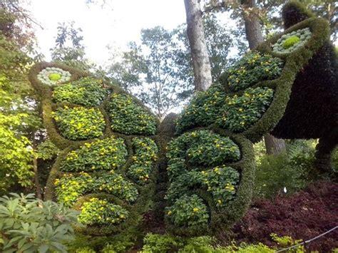 Atlanta Botanic Garden In Plants Picture Of Atlanta Botanical Garden Atlanta Tripadvisor