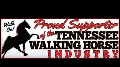 the tennessean facebook petition 183 facebook terror of the tennessee walking horse