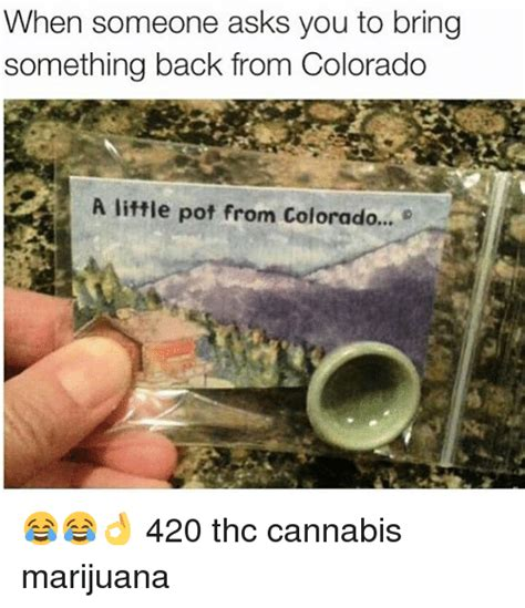 how to a to bring you something when someone asks you to bring something back from colorado a pot from colorado