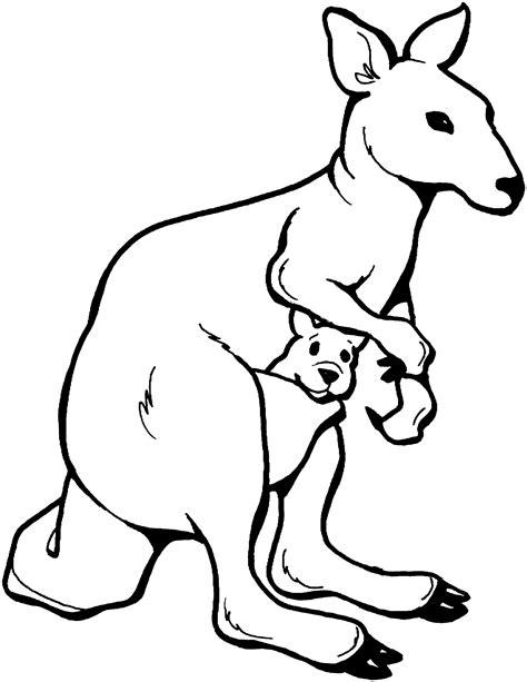 kangaroo coloring page free kangaroo coloring pages