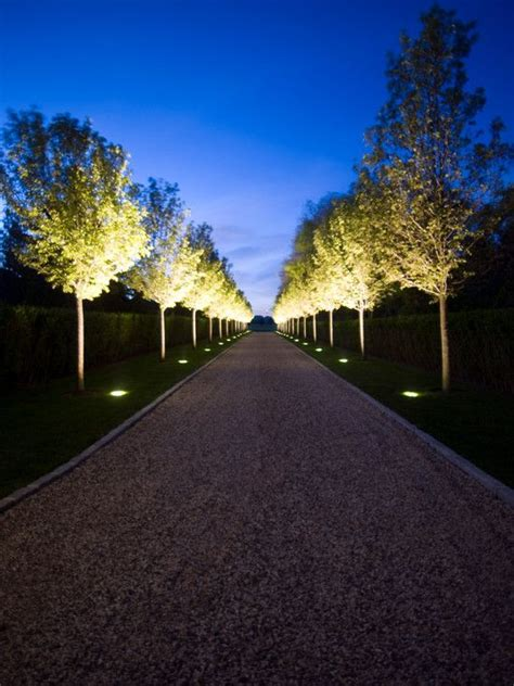 Landscape Lighting Installation Tips Les 25 Meilleures Id 233 Es De La Cat 233 Gorie Chevrefeuille