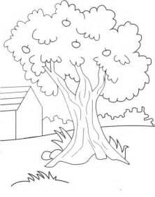 belajar mewarnai gambar pohon gambar mewarnai