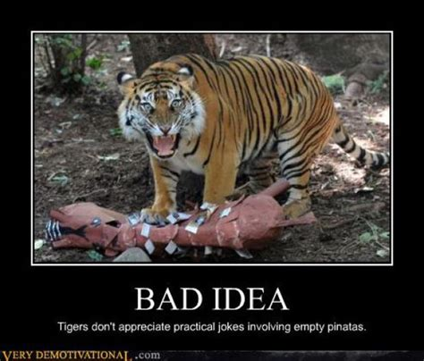 bad idee bad idea tiger meme poster for whatsapp