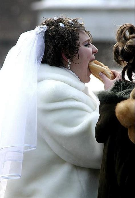 crazy wedding photos crazy wedding photos funny pictures cats funny pics