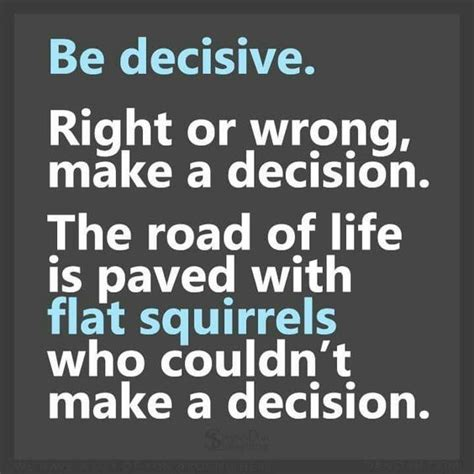 7 Silly Decisions Made By by 1000 Ideas About Squirrel Humor On