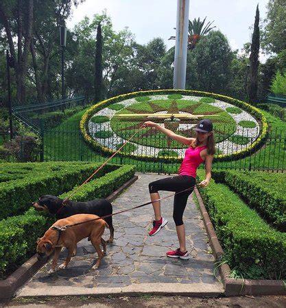 En el parque Hundido   Picture of Parque Hundido, Mexico