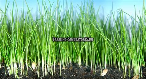 1 700 new plants are мод скрипт allow destroy grass with an cultivator v 1 0 farming simulator 2015 скачать моды