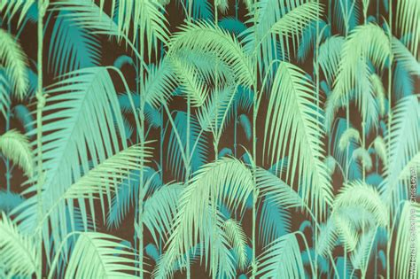 Ambiance Jungle Tropicale by Jungle D 233 Co Tropicale 3 Birds Collective
