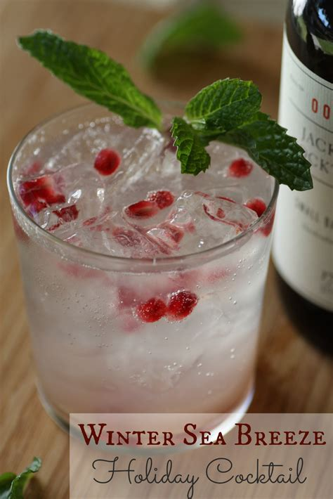 winter sea breeze holiday cocktail recipe drinks pinterest