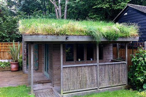 Green Roof For Shed by About The Small Green Roofs Guide