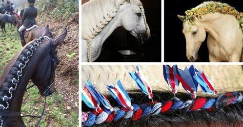 barrel racing horse hair braids horse braids 10 braided manes every equestrian will envy