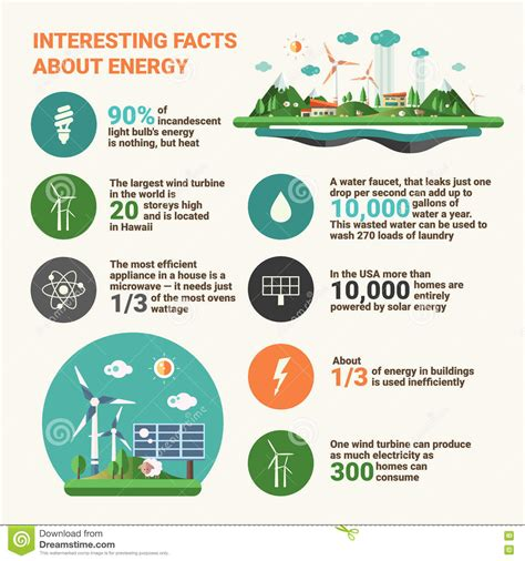facts about green ecology facts infographics educational poster stock