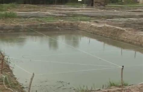 cost of fish pond construction concrete earthen plastic