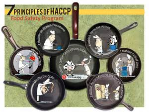 Principles of haccp infographic