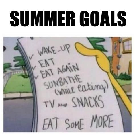 Funny Summer Memes - summer goals jokes memes pictures
