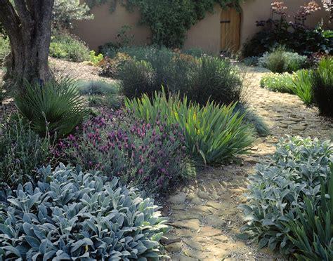 garden design using plant texture