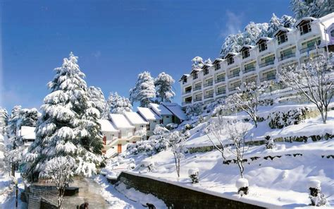 best image hotel green top patnitop
