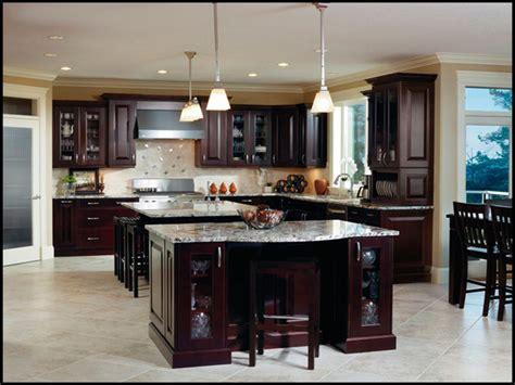 cabinet for dummies espresso kitchen cabinets for dummies 2018 homestuffedia