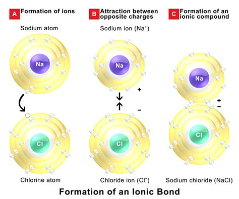 the role of ions in body chemistry bob mccauleys blog ionic bonding wikipedia