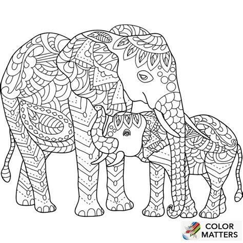 coloring pages for adults of elephants 496 best coloring elephant images on pinterest a4 adult