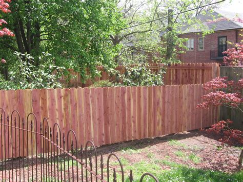 diy backyard designs outdoor privacy screen ideas christinas adventures pin