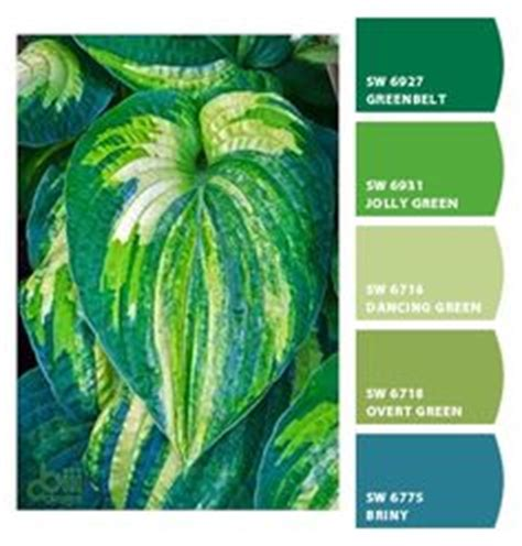 1000 images about tropical color schemes on color color palettes and