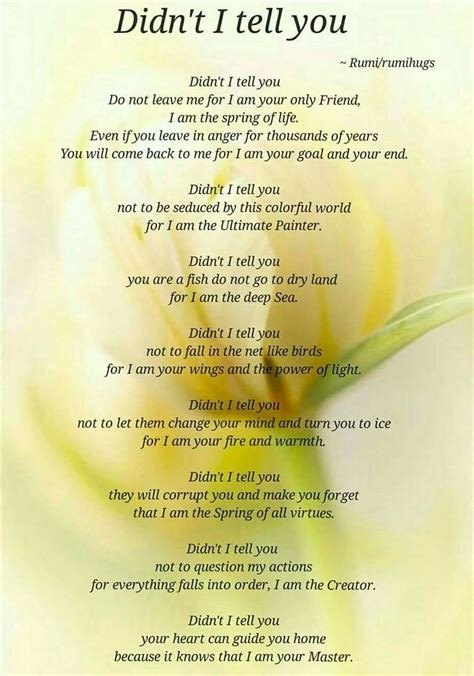 best rumi poems 52 best rumi poems posted beloved rumi rumi hugs page