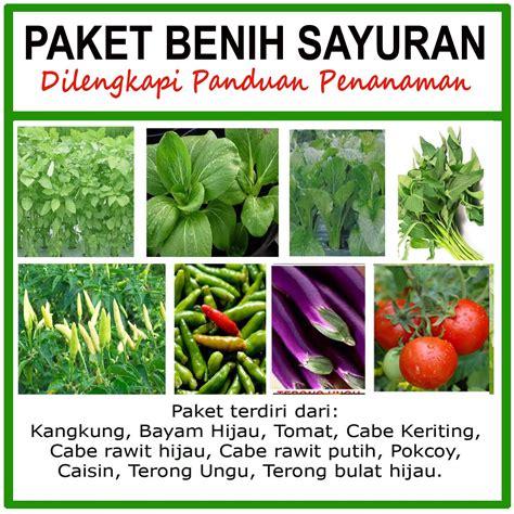 Jual Bibit Bayam Petik jual paket benih sayuran terbaik cocok untuk tanaman dalam