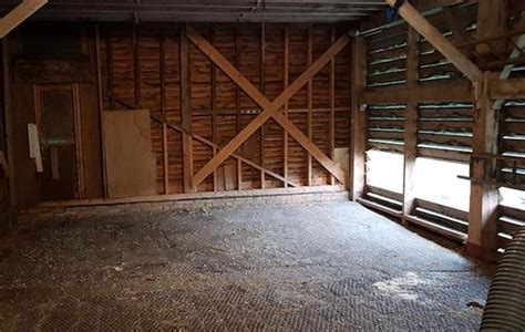 thieves rip  barn wall  steal bedding  equine