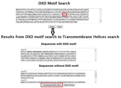 Meme Motif - meme motif search 28 images current protocols in
