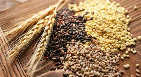 whole grains stomach 20 stomach flattening foods htv
