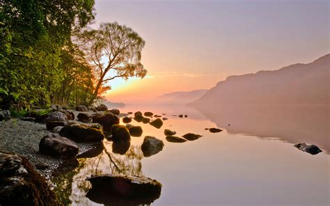 yellow sunset twilight lake rocks calm water tilted tree