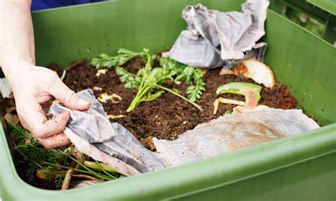 how to start a backyard worm farm 9homes