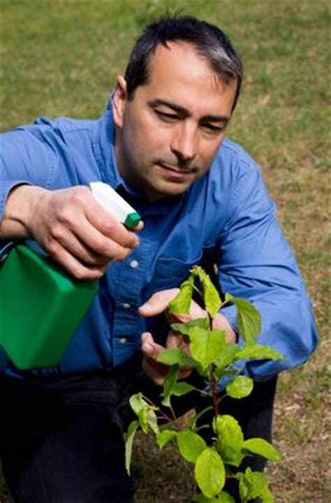 Alors Meme Que - les maladies virales 171 jardinage fm guide du jardinage