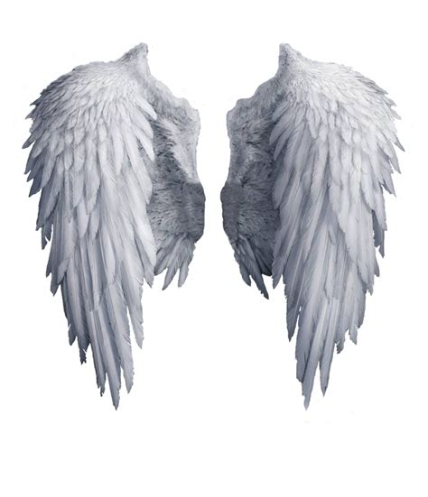 on angel wings angel wings stock png by shadow of nemo com on всячина